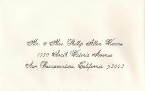 Premium Calligraphy Vienna Font