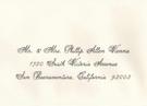 Premium Calligraphy - Vienna Font